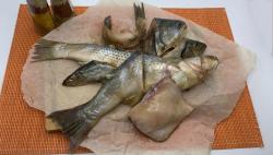 Обрезь рыб