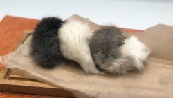 Пятая точка (хвосты кролика сушенные)
