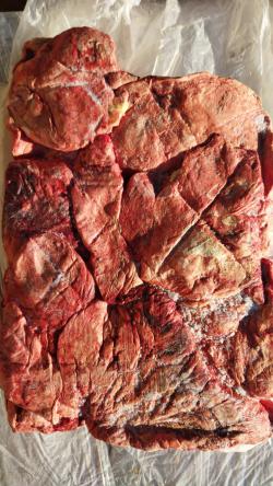 Легкое говяжье ( на корм животным)